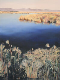 Marshland, Ruby Valley by Barb Meyer