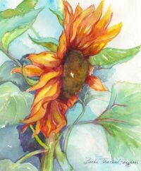 Sunrise Sunflower by Becki Hesedahl
