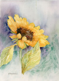 September Sunflower by Becki Hesedahl