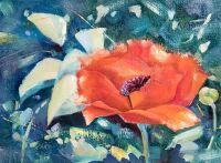 """My Red Poppy"" by Carolyn Conoy"