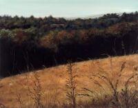 Upper Field in Autumn by Nathelle Norfleet