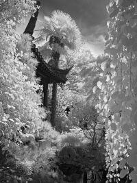 Lan Su Chinese Garden by Rich Bergeman