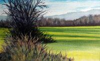 clow corner fields by Richard Bunse
